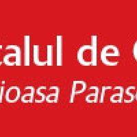 Spitalul De Copii Cuvioasa Parascheva