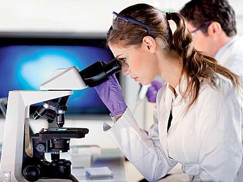 Ce ar trebui sa stie parintii despre cele 5 etape ale bankingului de celule stem? (II)
