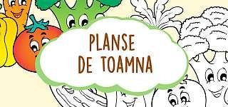 Planse De Colorat Pentru Copii Educatie Copilulro