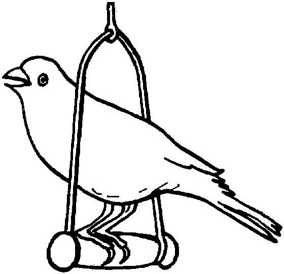 Papagalul Cuminte Educatie Copilulro